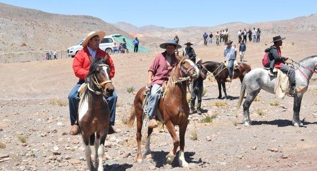 Svátek koní: Podívaná, při které se tají dech