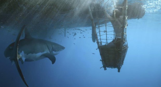 Na cestě za dobrodružstvím: Život na voru Kon-Tiki