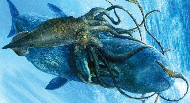 Monstrum z hlubin odhaleno: Luštění Krakenova genomu