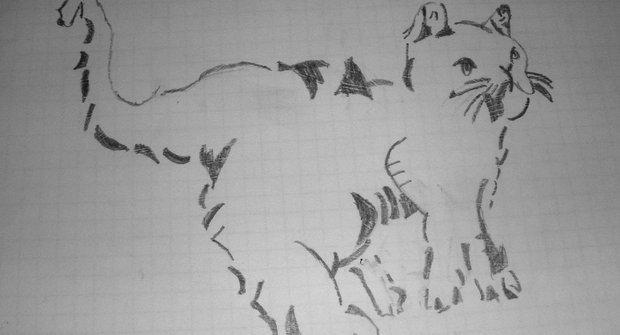 Zvířecí kresby