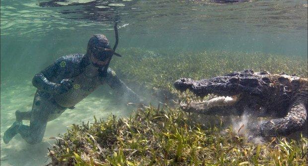 Krokodýl mořský: Hra se smrtí