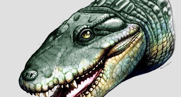 Divný pravěký krokodýl s kulatými zuby