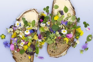 Jedlé květy povznesou každý pokrm, nechte se okouzlit naší galerií