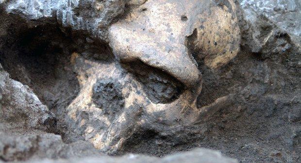 Lebka číslo 5: Naši předci byli různí