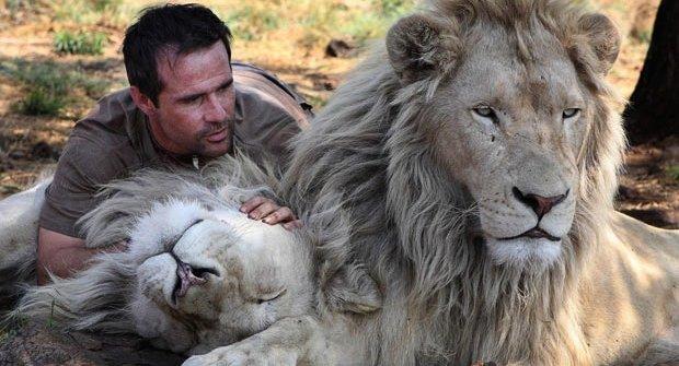 """Zaříkávač lvů: Pomazlí se s lvicí i jejím """"manželem"""""""