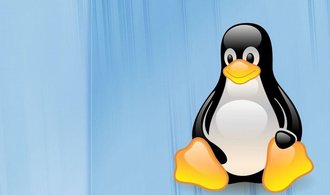 Operační systém Linux letos slaví 30 let. Zprvu to byl jen koníček a dnes je téměř všude