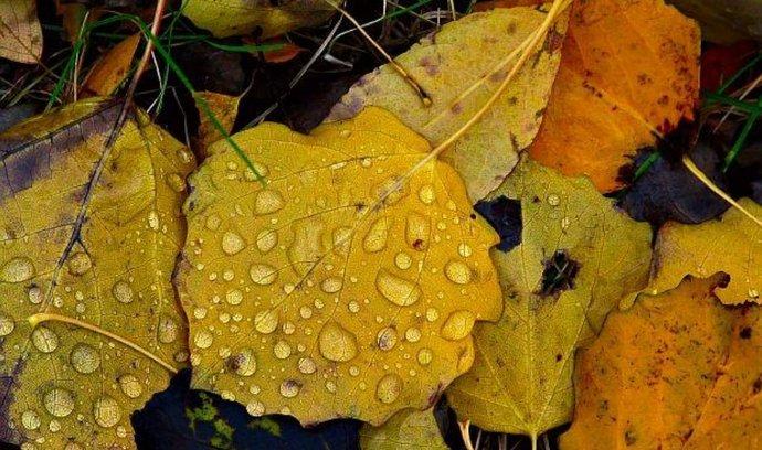 Podzim  ilustrační foto