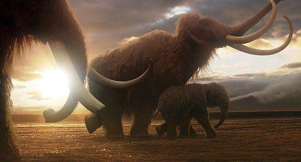 Dokážou vědci vzkřísit mamuty?