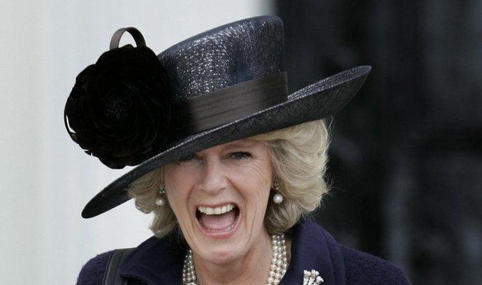 Manželka korunního prince Charlese Camilla obdržela nejvyšší možný řádový titul pro ženu Dáma velkokříže, a to v den sedmého výročí své svatby.