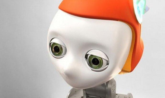 Meka Robotics