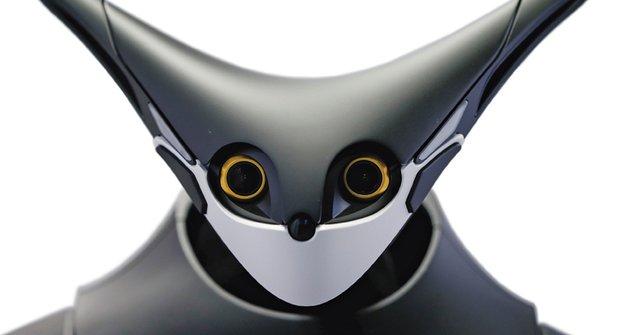 Robot z večerky: Technologie budoucnosti, nebo slepá ulička?