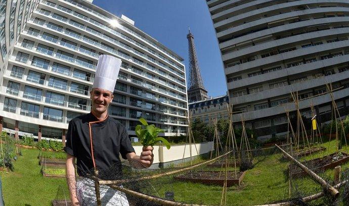Na pařížských střechách mají šéfkuchaři zelinářské zahrádky