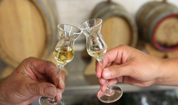 Nejjednodušší ochrana před obtížemi i před panikou je podle oslovených lékařů a lékárníků nepít nekvalitní alkohol a za současné situace dát přednost vínu a pivu.
