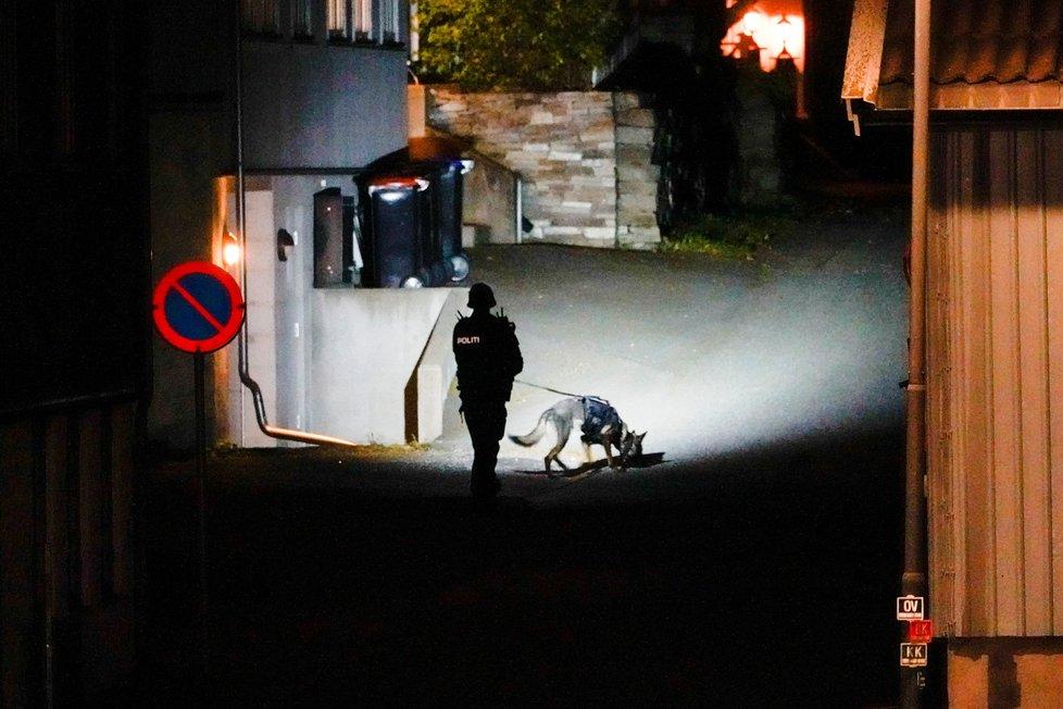 Útočník ozbrojený lukem a šípy v norském městě Kongsberg zabil několik lidí. (13.10.2021)