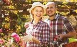 Vybavte se na zazimování rostlin a podzimní práce na zahradě.