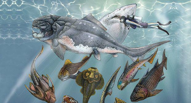Vyvinuli se z nich čtyřnožci: Pancířnatci a lalokoploutvé ryby překvapují