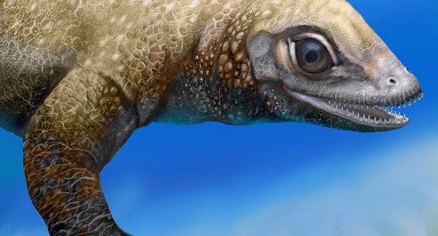 Dvoumetrový plaz plakodont pochází z Evropy