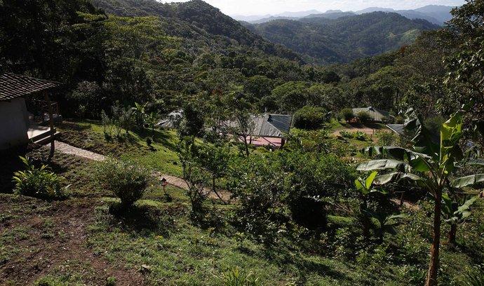 Plantáže, Nikaragua (ilustrační foto)