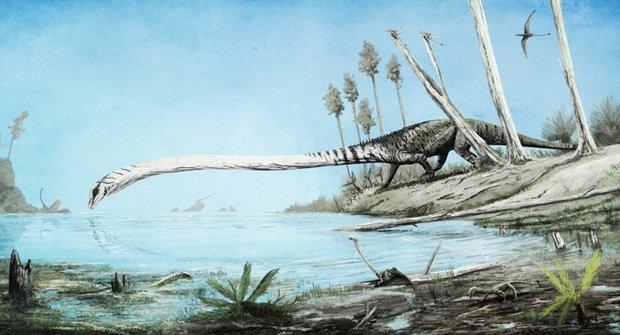 Paleontologická detektivka: Záhada divného žirafího plaze vyřešena!