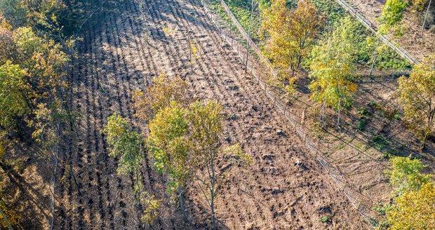 Podzim v Česku nabídl hřejivé teploty