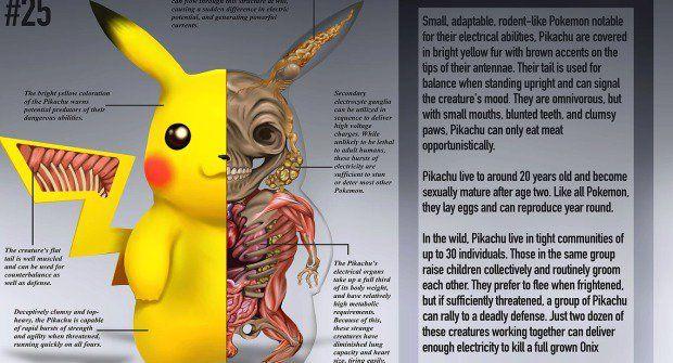 Pitva Pokémona: Průvodce anatomií je slušná řezničina
