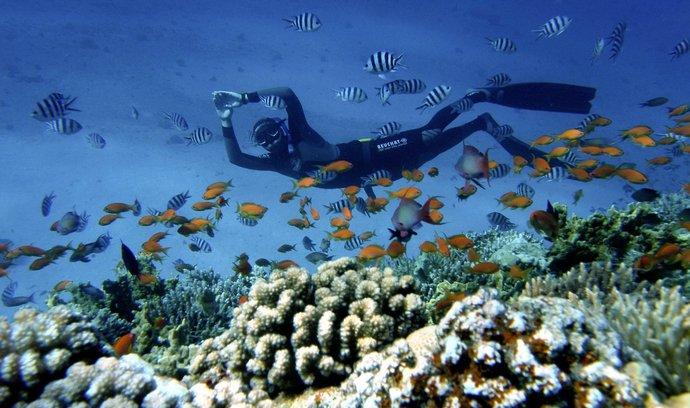 Rudé moře nabízí pro potápění skvělé podmínky.