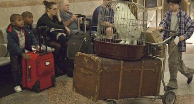 Skutečný Harry Potter hledá v New Yorku nástupiště 9 a ¾