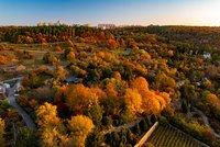 Dechberoucí podzim v botanické zahradě: Stromy hrají všemi barvami, podívejte se