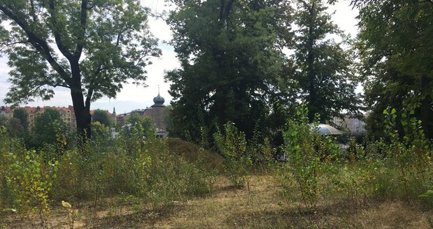 Takto v současnosti vypadá Dětský ostrov v Praze 5.