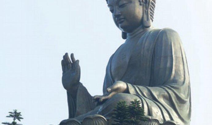 právo, byznys, zen, buddha