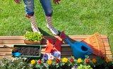 Generálka záhrady: pripravte ju na príchod jari