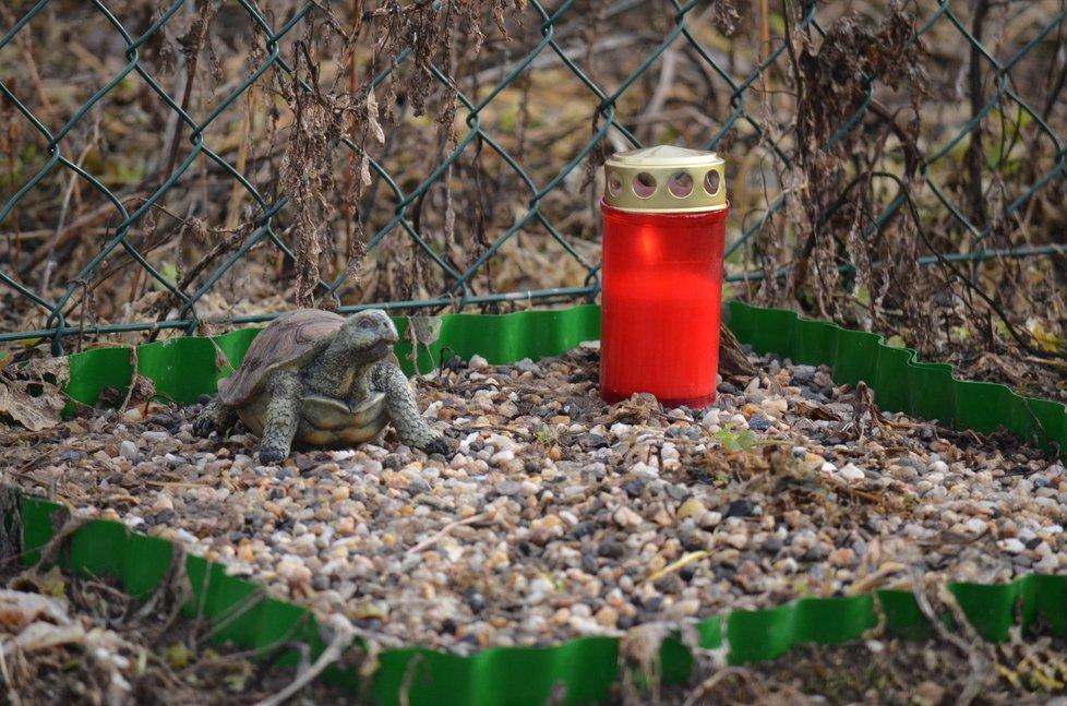Na hřbitově mohou odpočívat i malá zvířata, kočky, morčata a želvy