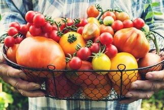 Sezóna rajčat je tady! S našimi 50 recepty si s úrodou hravě poradíte, a ještě si pochutnáte!