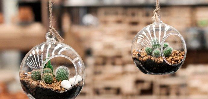 Darujte k MDŽ aerárium, sklenený kvetináč, ktorý visí vo vzduchu