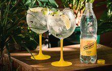 Na rozlučku s létem: Gin tonic
