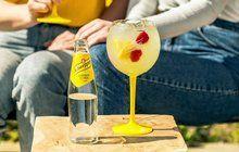 Na rozlučku s létem: Lemon Collonade Tonic