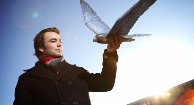 Robotický strašák ptáků