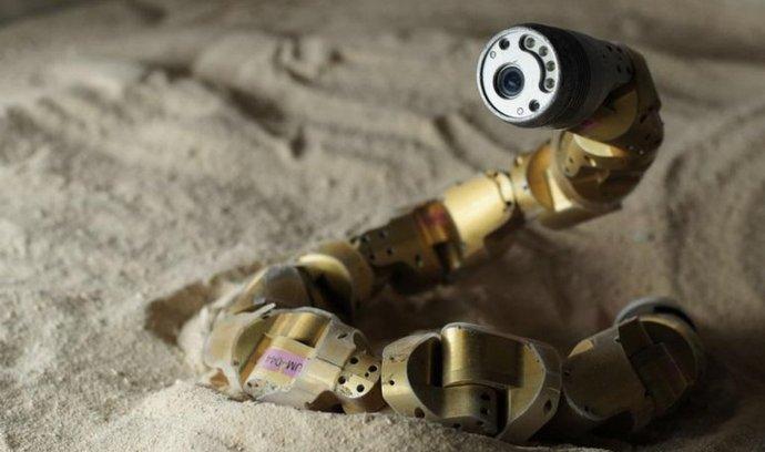 robotický had