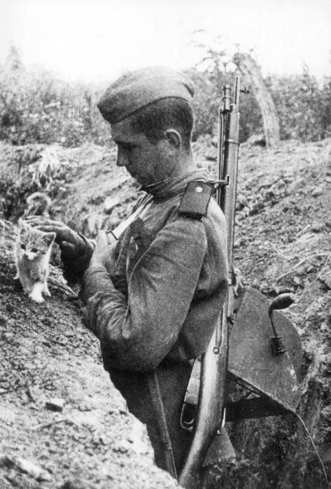Voják Rudé armády s kotětem během 2. světové války