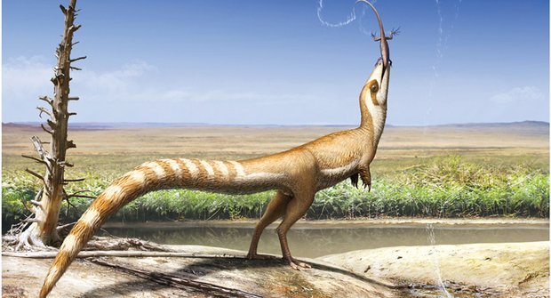 Dinosauří bandita: Sinosauopteryx nosil masku