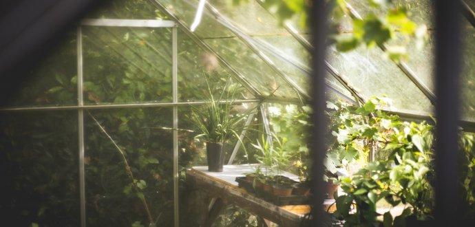Práca, ktorá prinesie plody: 7 krokov k úrodnému skleníku