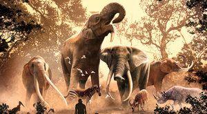 Poslední sloni z pravěku: Vzestup a pád pravěkých chobotnatců