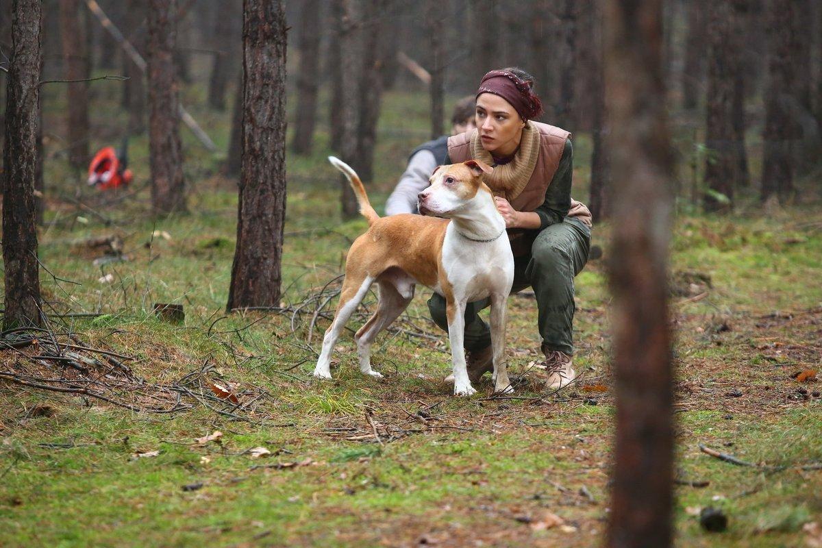 Psa měla zkrotit Eva Burešová. Burešová si coby Týna pitbula obtočila kolem prstu.