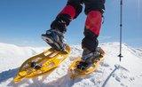 Pravá zimní turistika: zamilujte si s rodinou sněžnice