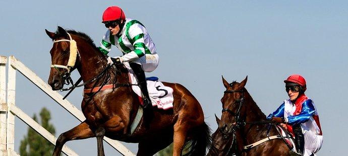 Zleva Josef Bartoš s koněm Theophilos a Jaroslav Myška s koněm Taste Of Rock překonávají Irskou lavici (ilustrační foto)