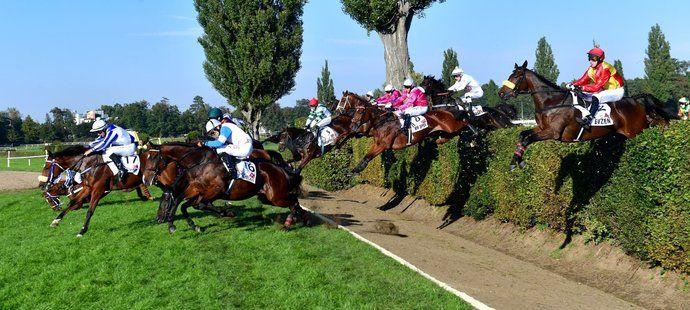 Koně na Velkém Taxisově příkopu během 131. Velké pardubické