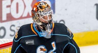 Přestupy NHL ONLINE: Dostál povolán do Anaheimu po zranění jedničky
