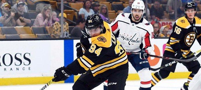 Jakub Lauko přispěl k výhře Bostonu nad Washingtonem v přípravném utkání jedním gólem