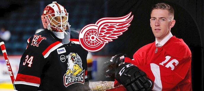Ukáže Detroit na české mládí? Hronek v AHL září, šanci dostal i Machovský
