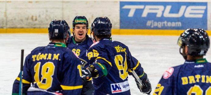 Hokejisté Ústí nad Labem porazili v sobotním programu hokejové první ligy Havířov